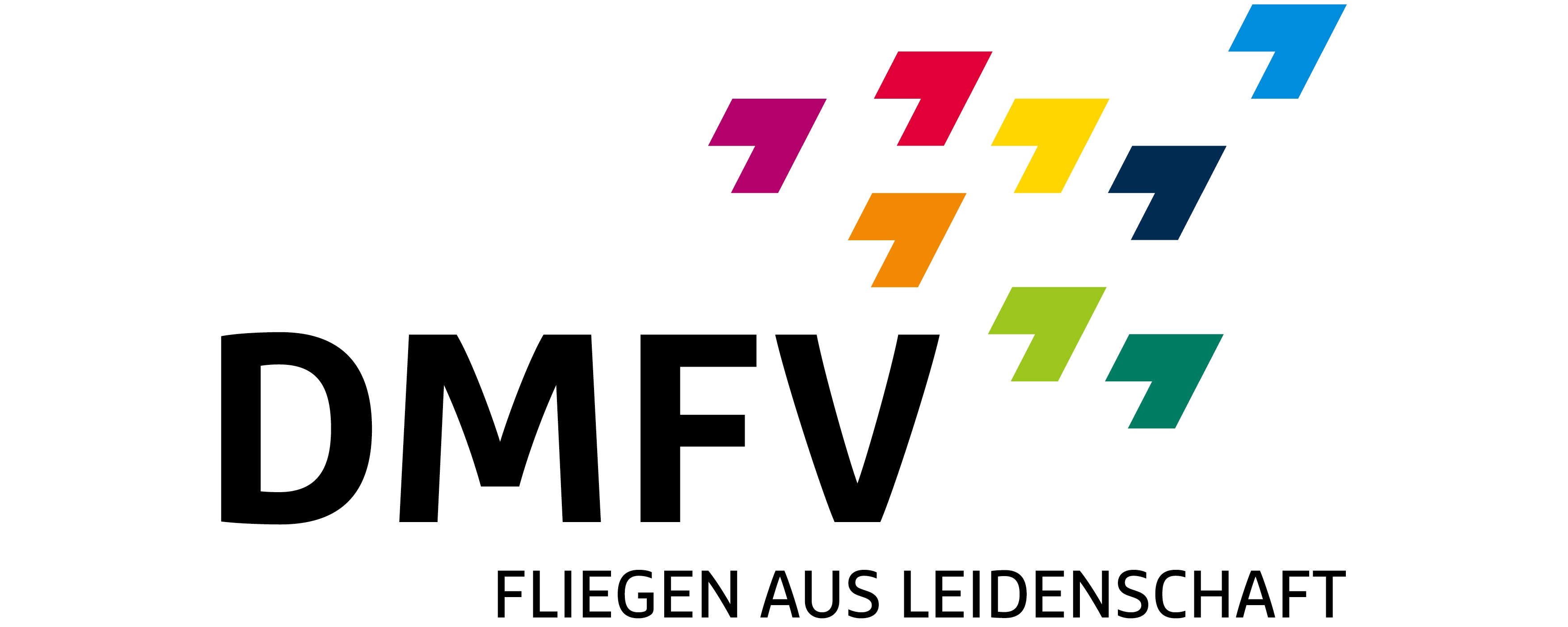 DMFV-Logo